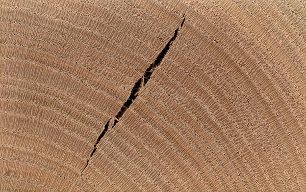 cracking timber furniture